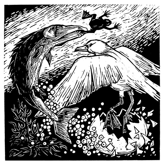BIRTH OF THE SEAGULL / Vesilinnun synty, linocut 1981, Edition 10, 26x26cm, Sold out